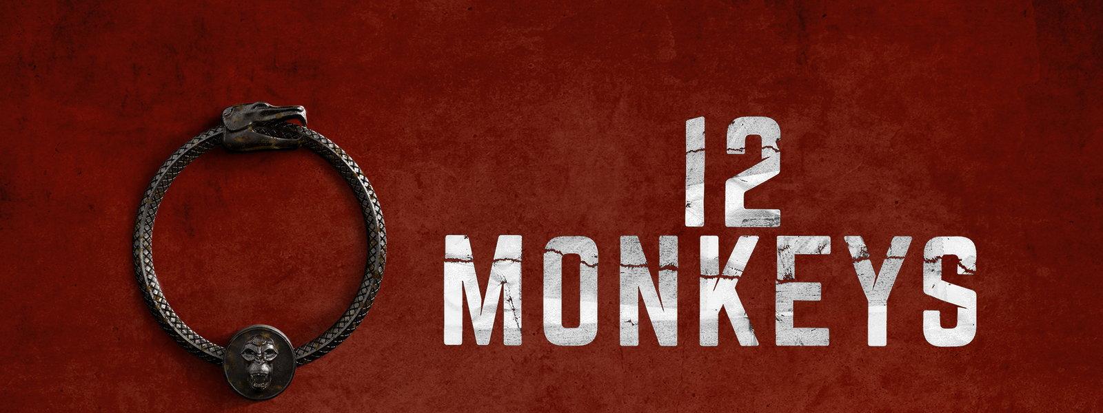 Risultati immagini per 12 Monkeys